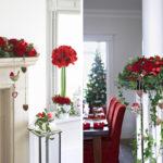 röda blommor i hemmet